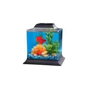 Betta Kits with LED Lighting